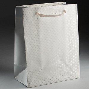 Пакет подарочный 23х18х10см ПАК2-079 min=12штук