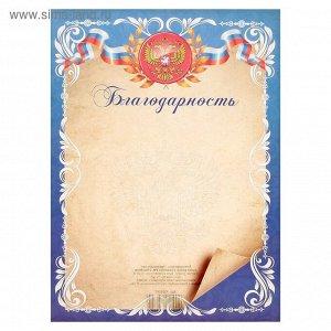 Благодарность Универсальная, синяя рамка, символика РФ
