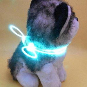 Ошейник LED для маленьких собак