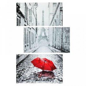 """Картина модульная на подрамнике """"Случай в Париже"""" 33*65, 40*65, 36*65см; 109х65"""