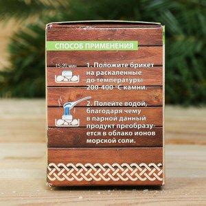"""Соляной брикет для бани """"Баня - место для души"""", 4 шт. с ароматом мяты"""
