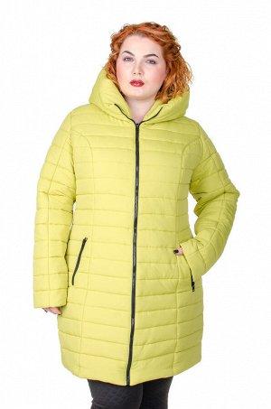 Куртка зимняя Катрина яблоко