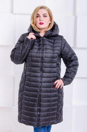 Куртка зимняя Флави черный