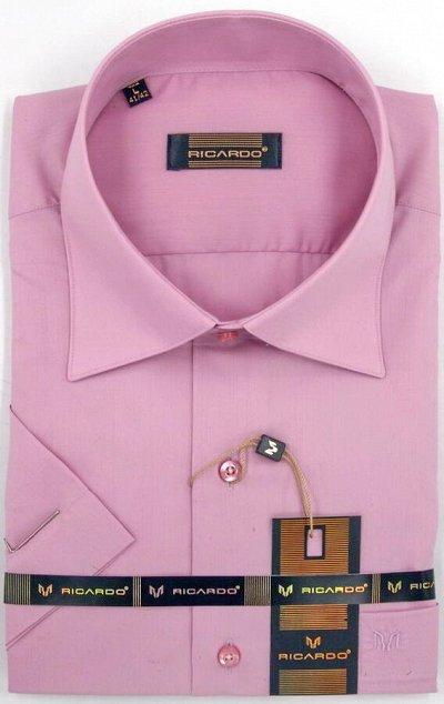 RICARDO. Рубашки. Мужчинам тоже нужна красота — Рост 170-182 Силуэт классическая короткий рукав