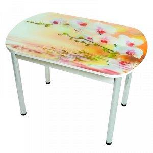 Стол раздвижной с фотопечатью Орхидея в воде 1100/1500х700х777 столешница стеклянная