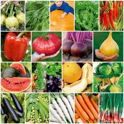 Садово-Огородная Ярмарка🌿 уДачный сезон — Цветной пакет: разное