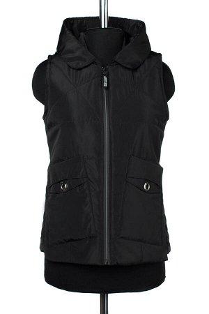 04-2261 Куртка демисезонная (синтепон 100) Плащевка черный