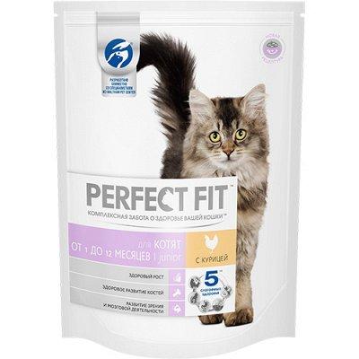 (2040) Все необходимое для любимых питомцев. Акция! — Прочие сухие корма для кошек — Корма