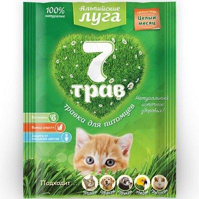 (2040) Все необходимое для любимых питомцев. Акция! — Лакомства для кошек и собак — Корма