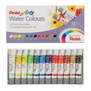 Акварель художественная набор в тубе 12 цветов по 5мл Pentel Water Colours