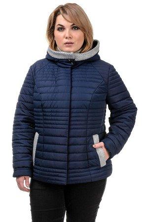 Куртка демисезонная «Дора», р-ры 48-54, №241 т.синий