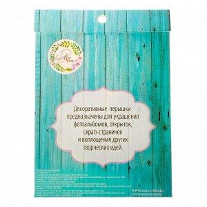 Перышки для творчества «Любимые оттенки шебби», 9 х 12,5 см
