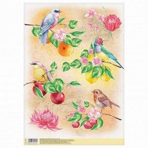 Декупажная карта «Райские птицы», 21 ? 29,7 см