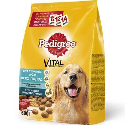 (2040) Все необходимое для любимых питомцев. Акция! — Корма Pedigree сухие для собак — Аксессуары
