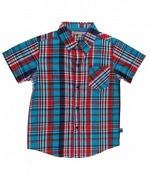 Рубашка Sweet Berry 196369 *