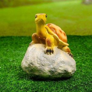 "Садовая фигура ""Черепаха на камне"" 11,5х11,5х17см"