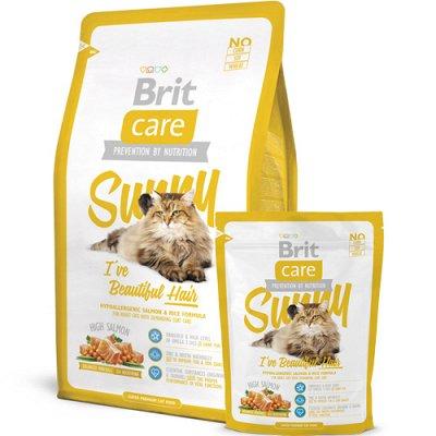Все необходимое для любимых питомцев - очень много новинок! — Корма Brit  для кошек — Для кошек