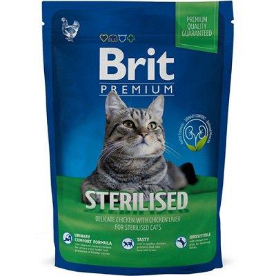 Для братьев наших меньших, распродаем наличие — Для животных (Корм, Уход) — Для кошек