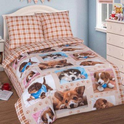 Яркие и красочные комплекты постельного белья — Постельное белье зверюшки
