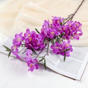"""Цветы искусственные """"Молочай миля"""" 6*85 см, фиолетовый"""