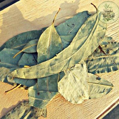 Лазовский вкусный мёд и  Чаи да Травы. Липа 2020! — Травы чистые 100г — Чай