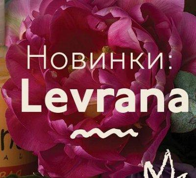 ✅Levrana-94 ❤ Натуральная российская косметика🍀❗Леврана — Levrana - НОВИНКИ ♥♥♥ — Красота и здоровье