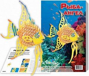Ангельская рыбка (цвет)