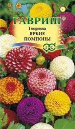 Георгина Яркие помпоны 0,2 г