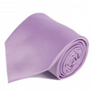 галстук              10.08-02013
