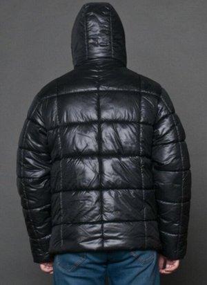 Куртка мужская зимняя черный