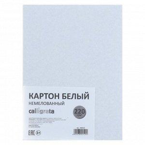 Картон белый А5, 6 листов, 220 г/м2 Calligrata, немелованный, ЭКОНОМ