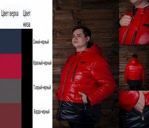 Куртка мужская зимняя Фреш
