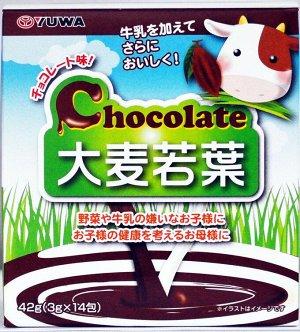 Шоколадное аодзиру с фолиевой кислотой, кальцием, магнием, калием, железом и вит В