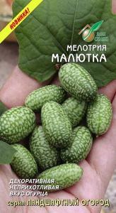 Огурец Один из любимых гибридов для выращивания в открытом грунте и теплицах. Частично партенокарпический,преимущественно женского типа цветения ,раннеспелый (44-54 дн. от всходов до начала плодоношен