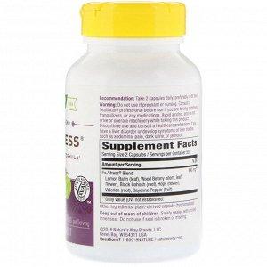 Nature&#x27 - s Way, Успокаивающее средство «Стресс в прошлом», 445 мг, 100 растительных капсул