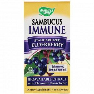 Nature&#x27 - s Way, Sambucus Immune, бузина, стандартизированный экстракт, 30 пастилок