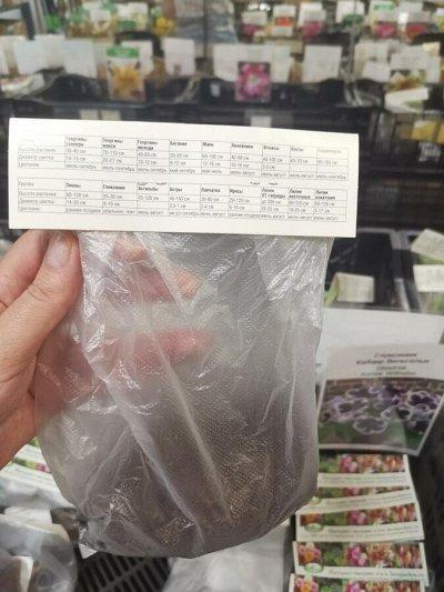 Луковичные(тюльпаны, нарциссы) предзаказ на осень 2020 -2/20 — Упаковка, пример для визуализации — Декоративноцветущие