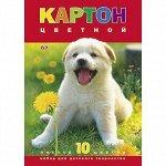 Картон цвет 10л 10цв мелованный Белый щенок 03414 Hatber