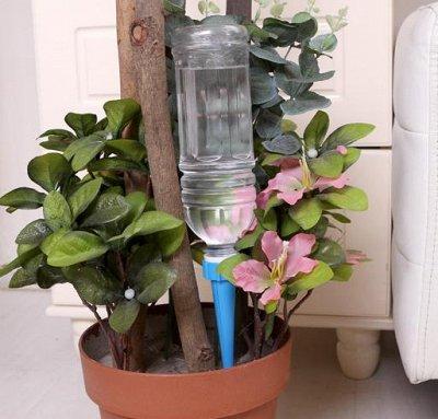Эффективная стирка и уборка — Кашпо, автополивы, подвесы — Комнатные растения и уход