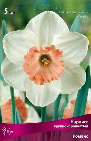 Нарцисс (крупнокорончатый) - Романс