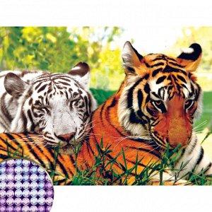 Алмазная вышивка с частичным заполнением на раме «Тигры», 30 х 40 см. Набор для творчества