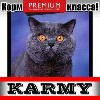 Karmy - корм для собак и кошек премиум класса! №30 — Karmy для британских короткошерстных кошек! — Корма