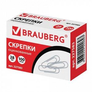 Скрепки BRAUBERG, 28 мм, оцинкованные, 100 шт., в картонной коробке, 227583(10шт)