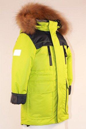 Куртка зимняя подростковая Феникс