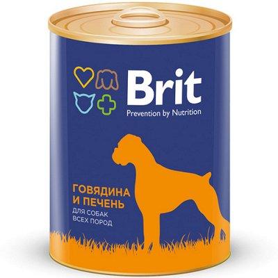 (2040) Все необходимое для любимых питомцев. Акция! — Корма Brit влажные для собак — Корма
