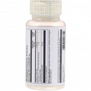 Solaray, L-лизин и бета-глюкан, 1000 мг, 60 капсул