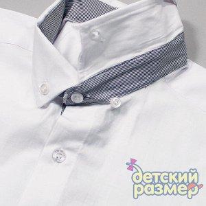 Рубашка Размерный ряд: 158, 164, 176; Соответствие размерам: согласно размеру; Кол-во штук в уп: 3; Состав: 97% хлопок, 3% лайкра; Ткань: текстиль; Производитель: Турция; Фабрика: Cegisa Рубашка с ко