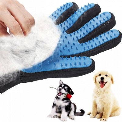 TV-Хиты! 📺 🥞 Все нужное на кухню и в дом!🍩🍕  — Перчатка для вычесывания собак от 63 рублей — Уход