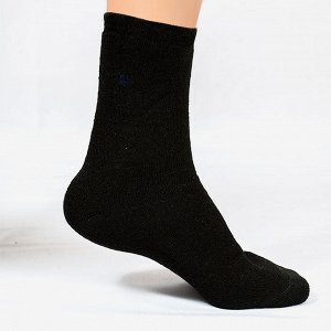 Носки мужские махровые МС-306