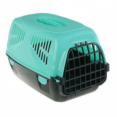 Зоотовары — Зоотовары. Товары для кошек. Перевозка кошек. Клетки-перенос